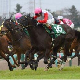 中山牝馬Sは衝撃的なピンク帽子決着