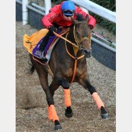 「ジャパンC馬として恥ずかしくないレースを」と高野調教師