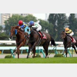 12年は4番人気の牝馬フミノイマージンが勝利