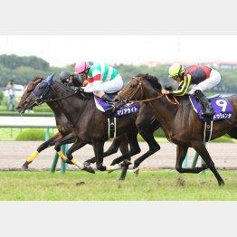 昨年の宝塚記念は関東馬のワンツー