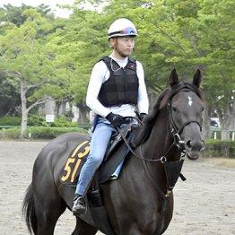 波乱が前提 人気の関西馬より関東馬で穴狙い