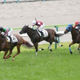 福島競馬は非社台、非ノーザンで儲けろ