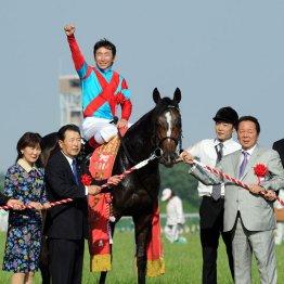 【中京記念】 適性はマイラー 両師匠はダービー馬に色気