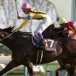 【菊花賞】96年ダンスインザダークのユタカさんの騎乗はアッパレだった