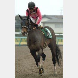 マーチSは7歳馬インカンテーションがV
