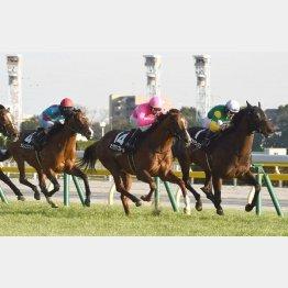 白富士Sで後の重賞馬を完封