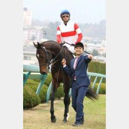 有馬記念の日に阪神で新馬を勝ったダノン