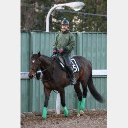 皐月賞馬アルアインの全弟