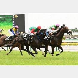 多摩川Sは鬼脚でのちの重賞馬に肉薄