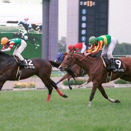 きさらぎ賞 新馬から連勝は21年前のヒコーキグモまで遡る