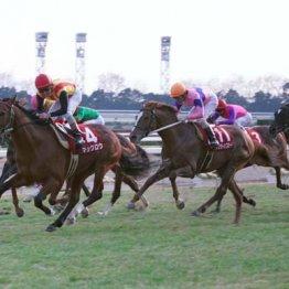 宮川一朗太 ここ20年、勝ち馬は「前走が重賞」のハズが…