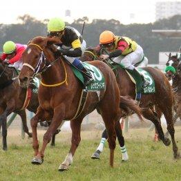 【京都牝馬S】GⅠ③着馬ワンスインナムーンの重賞初制覇