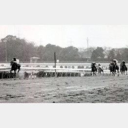 89年の弥生賞は、勝ったレインボーアンバー(左)が不良馬場を2番手から抜け出し②着に大差をつけた