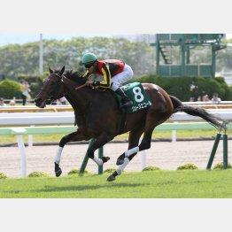 昨年は3歳牝馬ジューヌエコールが勝利