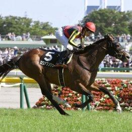 【日曜中京11R・中京記念】ウインガニオンは外枠を引いたのがネック