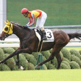 【土曜阪神10R・野分特別】実力馬プラチナヴォイスにV条件が揃った