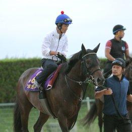 【日曜阪神11R・神戸新聞杯】エポカドーロがダービー馬に雪辱