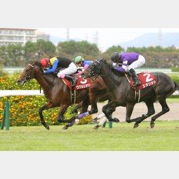 神戸新聞杯ではワグネリアンと0秒1差
