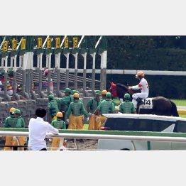 ゲートインを補助する仕事人(黄色いヘルメット)