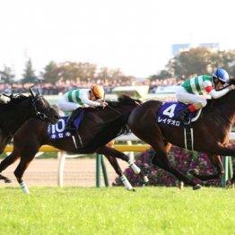 秋の天皇賞は現在のところ「レース・オブ・ザ・イヤー」