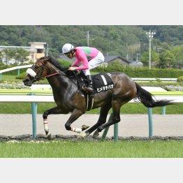 福島の南相馬特別勝ち