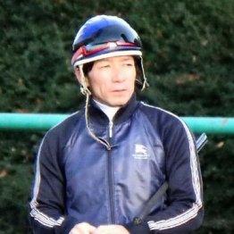 【チャンピオンズC】内田ノンコノユメ2つ目GⅠ奪取だ 「武器を最大限に生かしたい」