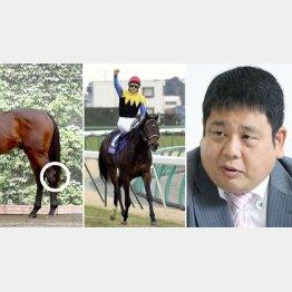 競馬評論家の須田鷹雄さん(引退レース有馬記念=央、後ろ脚の丸印部分が飛節=写真馬はレイデオロ・左)