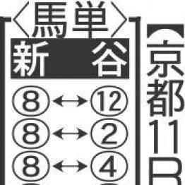 【月曜京都11R・淀短距離S】6F戦がマッチするグランドボヌールで好配当