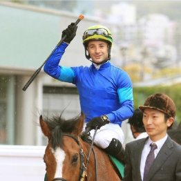 【日曜東京11R・東京新聞杯】上昇の4歳馬で今回もきっちりと