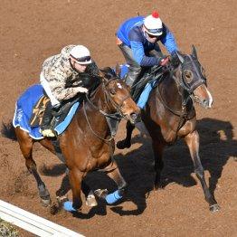 ホウオウプリンセス「馬体が緩いけど、これで勝てば…」