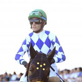 【土曜京都11R・京都牝馬S】牝馬同士ならワントゥワンが自慢の末脚で決める