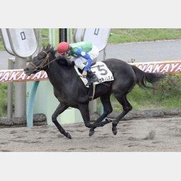 ○キセキノムスメは中山千二で初勝利