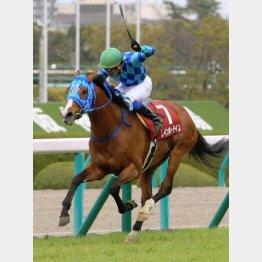 昨年の勝ち馬レインボーラインは天皇賞も制覇