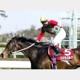 地方馬ながら弥生賞を制したコスモバルク