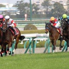 【桜花賞】ダノンの相手といわれている馬にはいずれも不安材料が