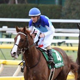 【皐月賞】アドマイヤマーズから馬連と1頭軸3連複が勝負馬券