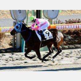 7Rケイアイマリブは自身で新馬勝ち
