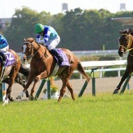 【天皇賞】去年の菊花賞よりも、このレースを思い出せ!