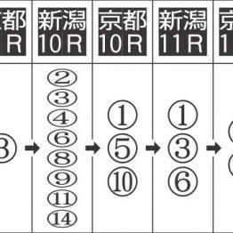矢車賞レースガーデン 距離延長で狙い目