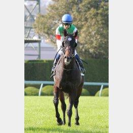 トゥザフロンティアは荻野極とのコンビで五百万勝ち