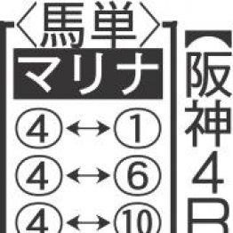 【マリナの日曜競馬コラム・阪神4R】