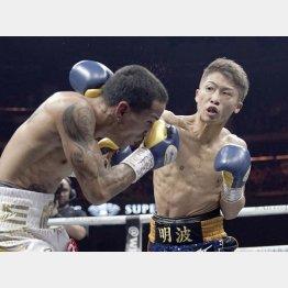 ボクシングの井上尚弥選手を彷彿とさせる