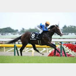 東京の最初の特別戦も3歳馬が制した