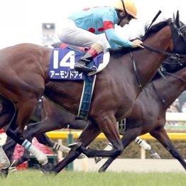 【宝塚記念】有力馬の「グランプリ」回避続出には理由がある
