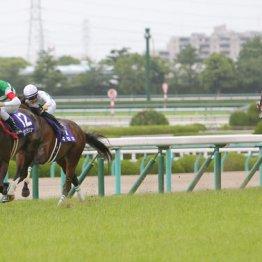 宝塚記念の①②着馬と③着以下の大きな差
