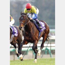 2006年の有馬記念で引退したディープインパクト