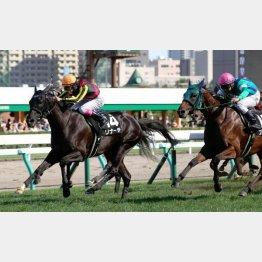 昨年の札幌で一千万勝ち