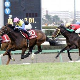 【記憶の名馬たち】歴史的名馬に真っ向好勝負を挑んだ マイネルレコルトの雑草魂