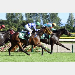 昨年②着のワントゥワンは中京記念の⑤着馬