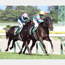 昨年の関屋記念を制したプリモシーンも牝馬